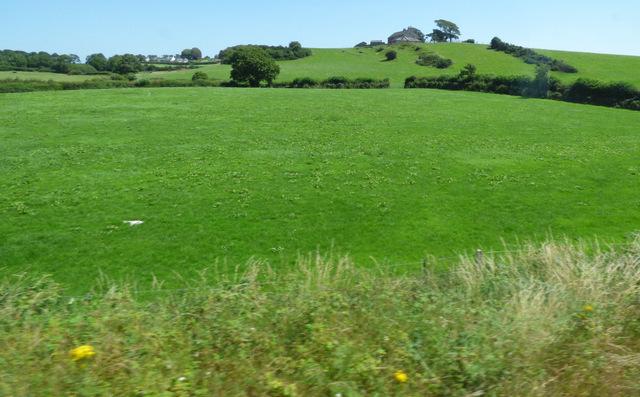 Fields at Belmount Farm
