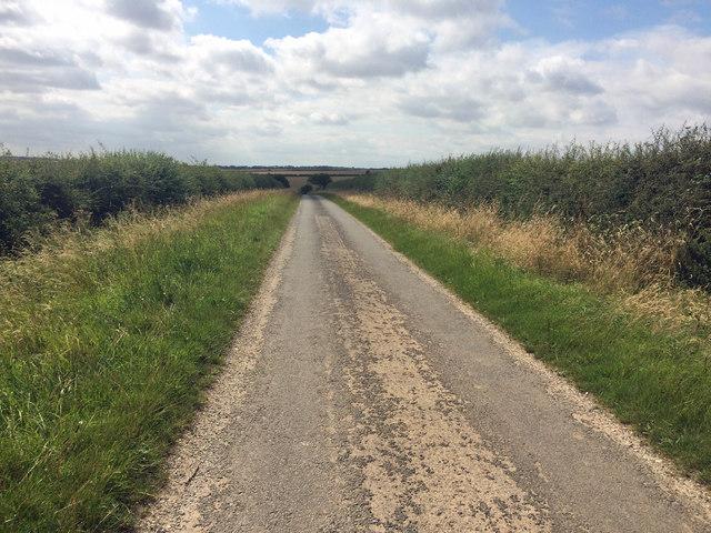 Minor road towards Thorganby