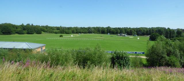 Cardinal Newman College sports fields