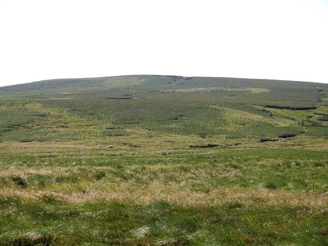The northwestern slopes of Killhope Law
