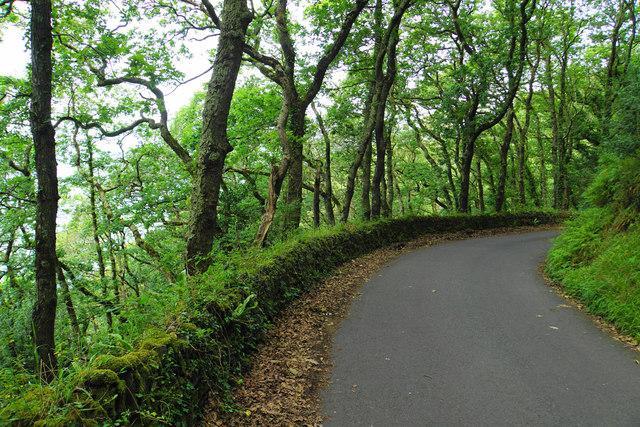Sir Robert's Path