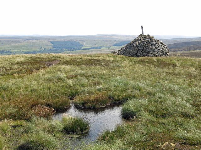 Bog and currick on Killhope Law