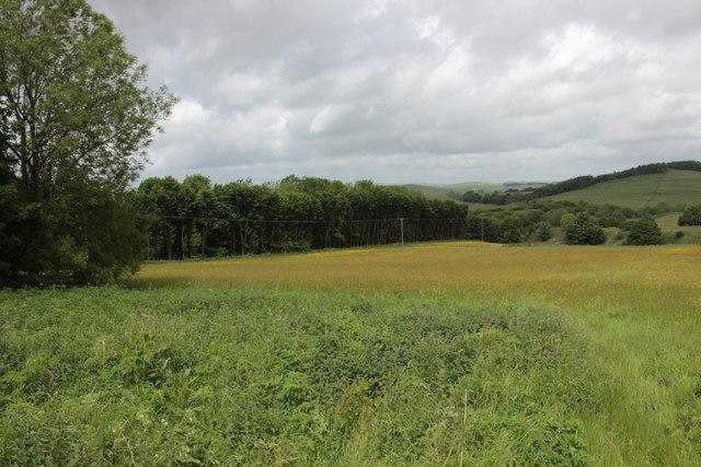 Hartington Meadows Nature Reserve