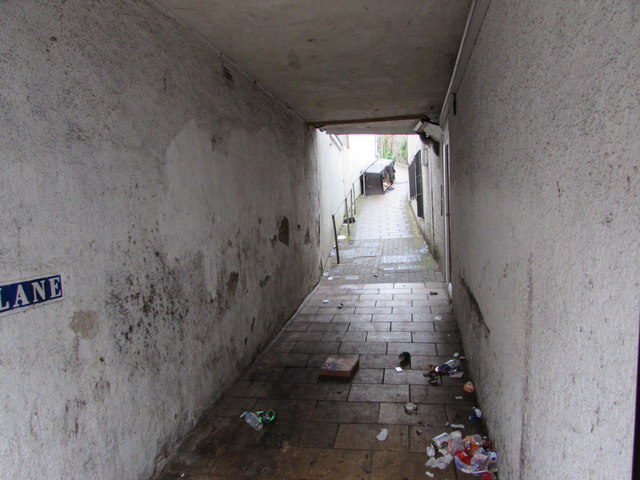 Litter on Tarry Lane, Ilfracombe