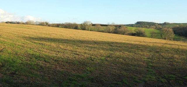 Field above Watergate