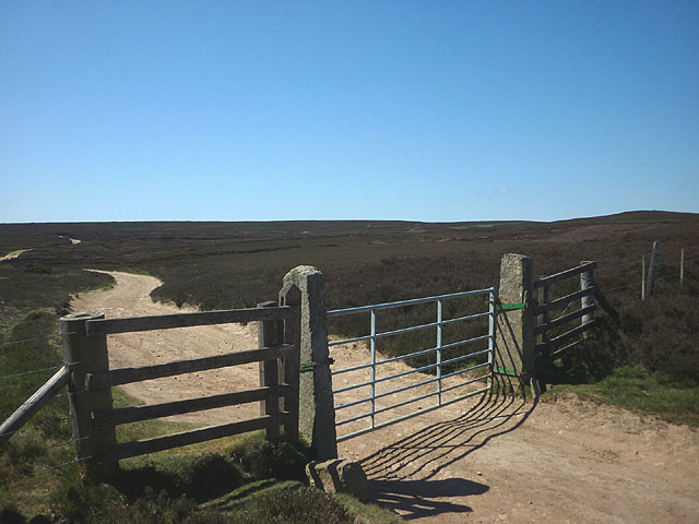 Gate on Blanchland Moor