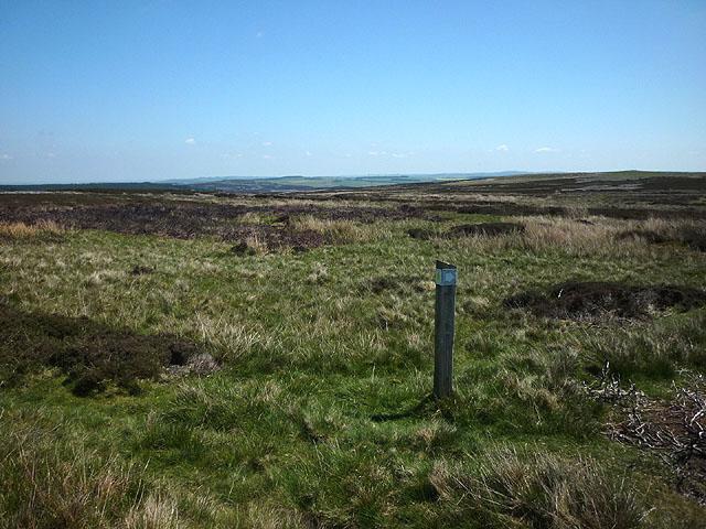 Footpath marker post, Blanchland Moor