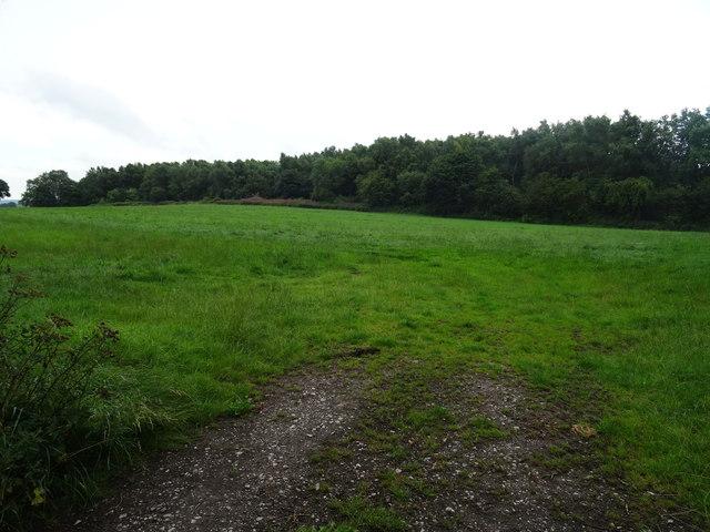 Blackwall Plantation