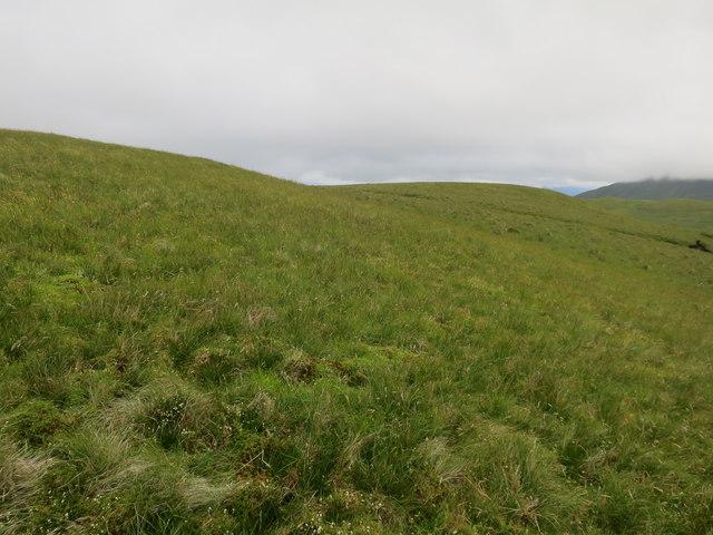 Grassy area below Beinn Mhic na Cèisich