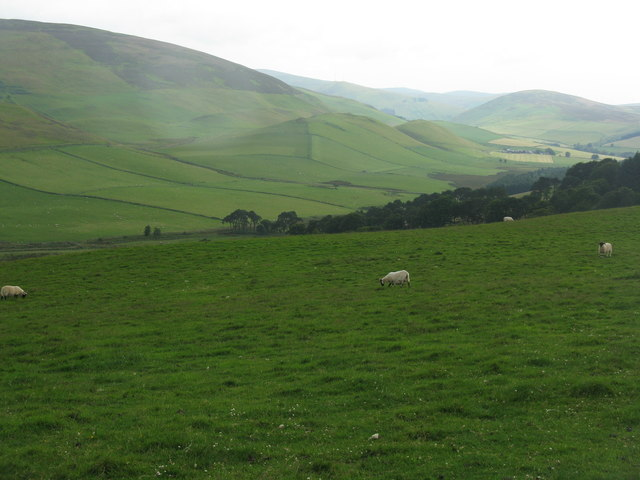 Pasture at Southside