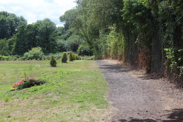 Path, Rogerstone Welfare Recreation Ground