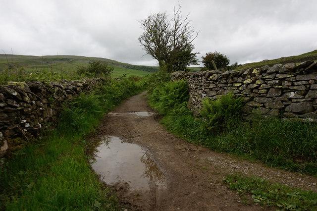 White Stone Lane towards Crummack