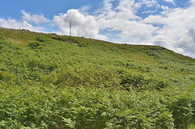 Hillside north of Camustiel