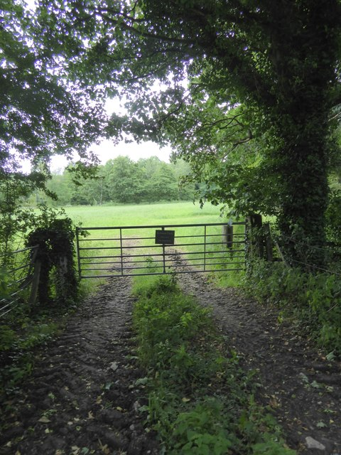 Gate and field by cycle path, near Saltford