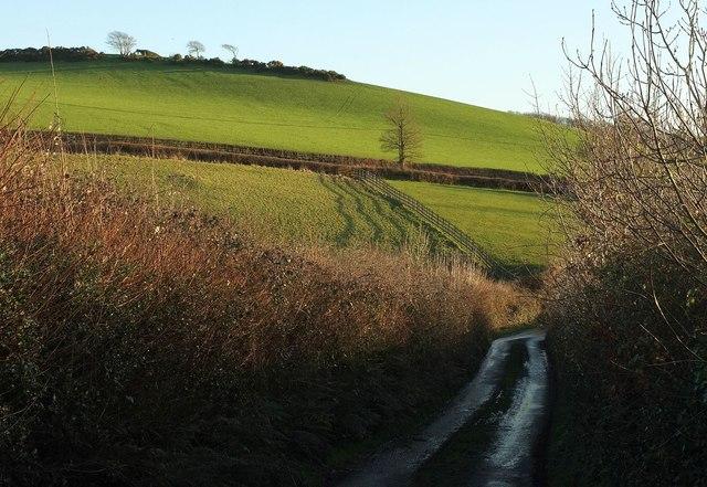 Hillside, Dorridge