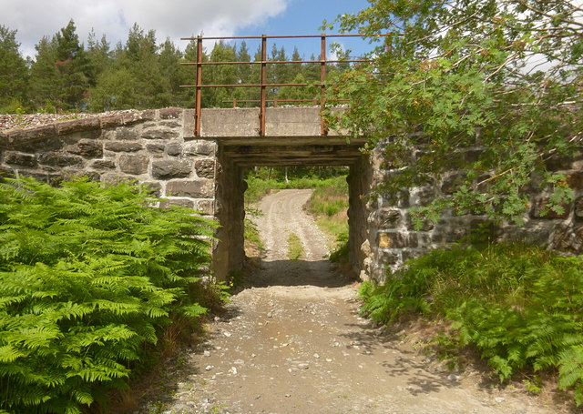 Railway bridge over forest track, by Rogie