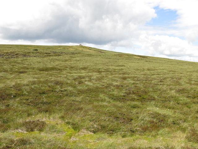 Moorland below the currick on Killhope Law