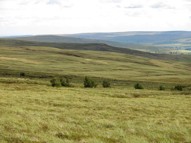 The southeastern slopes of Killhope Law