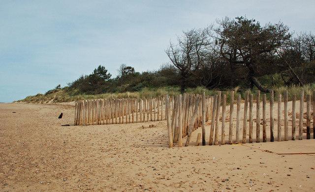 Dune Restoration Work