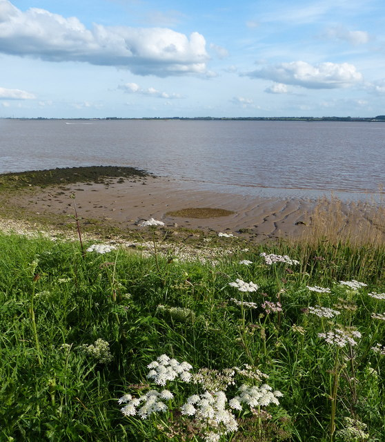 Humber shoreline at Hessle