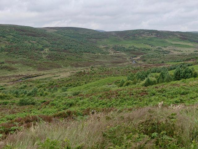 The glen of the Abhainn Leataidh