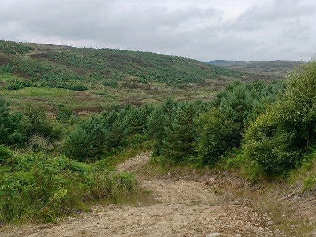 Track junction beside the Abhainn Leataidh