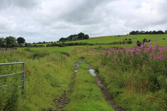 Footpath heading West from Broad Head Farm