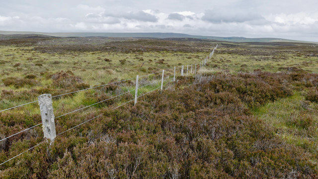 Fence across the moorland between the Lettie valley and West Langwell