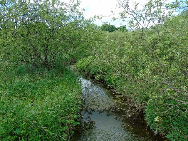 Tarn Moss (water course)