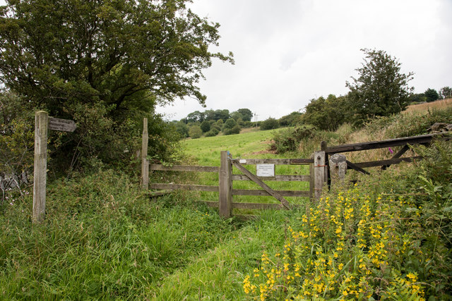 Bridleway leading to Whittonstall and Whittonstall Sproats