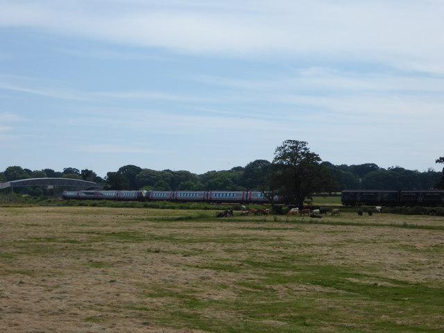 Passing trains near Powderham