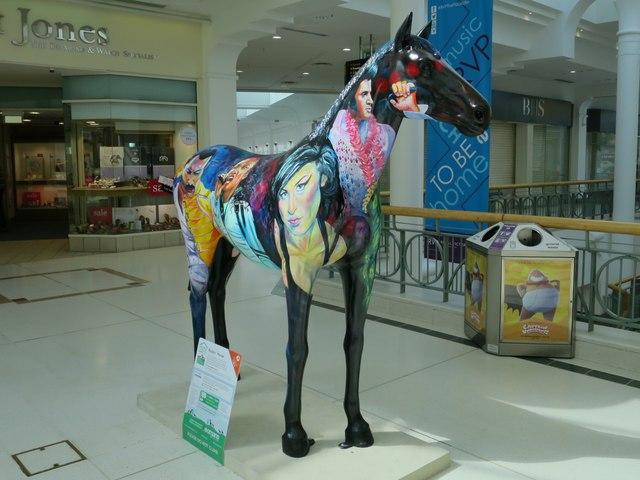 Rockin' Horse, Herd of Hospice
