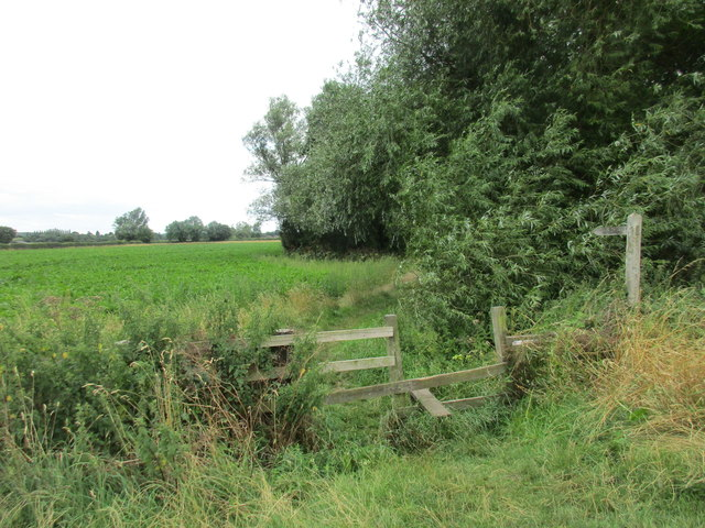 Footpath to Bleasby