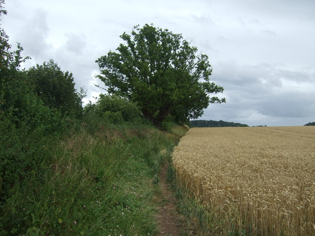 Footpath to Piper's Hill