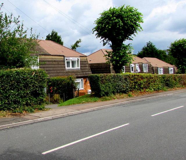 Houses in The Avenue, Govilon