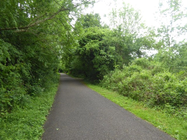 Bristol and Bath cycle path in Tennant's Wood