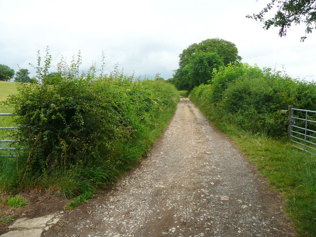 Folly Lane, Slad