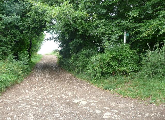 Footpath on the Laurie Lee walk