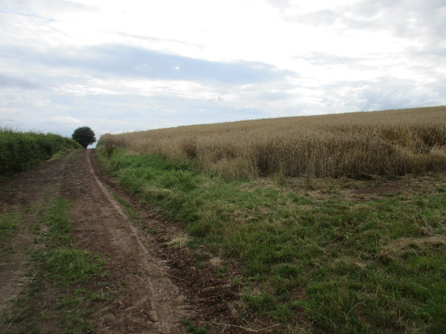 Farm track off Gorsy Lane