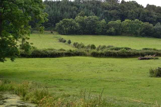 Canalside fields at Ty-poeth Farm