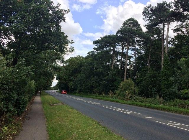 A18 Road near Wyndthorpe Hall