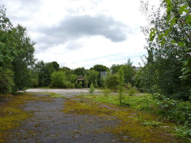 Behind Derelict Building, Burcot