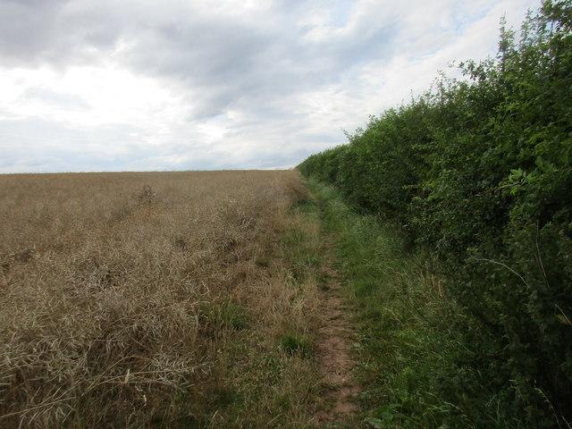 Bridleway to Brackenhurst and Halloughton