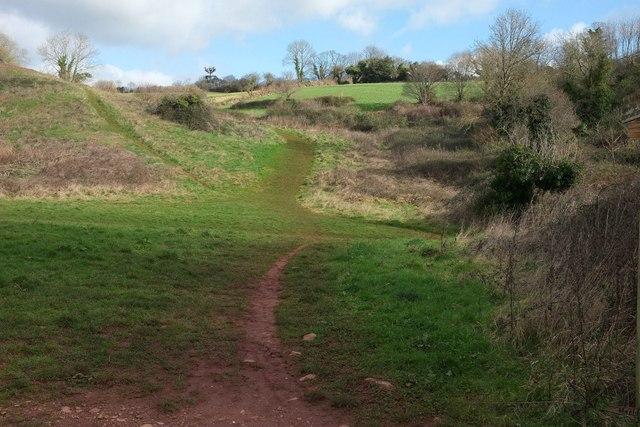 John Musgrove Heritage Trail, Cockington valley