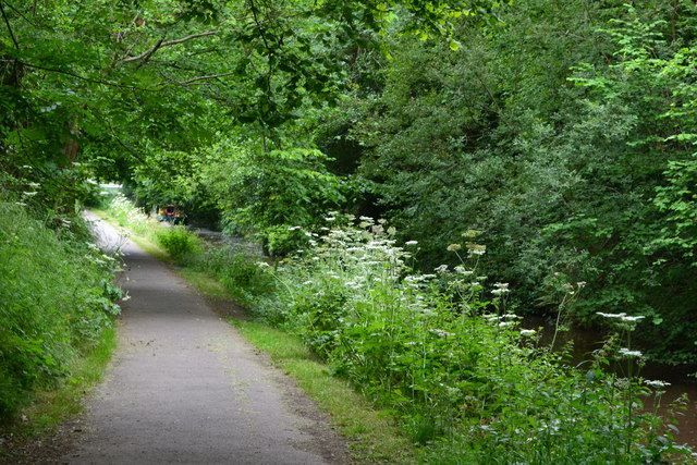 Monmouthshire and Brecon Canal towpath just south of Cwmbran Tunnel