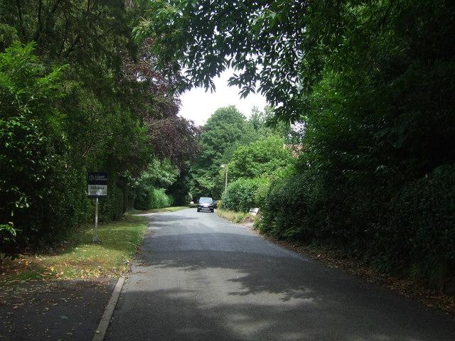 Mearse Lane
