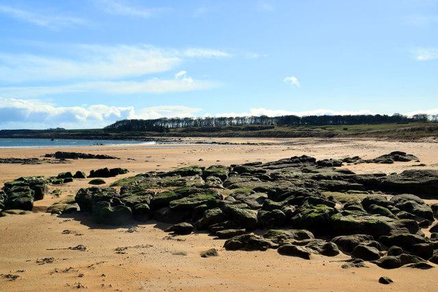 Kingsbarns beach, looking towards Cambo