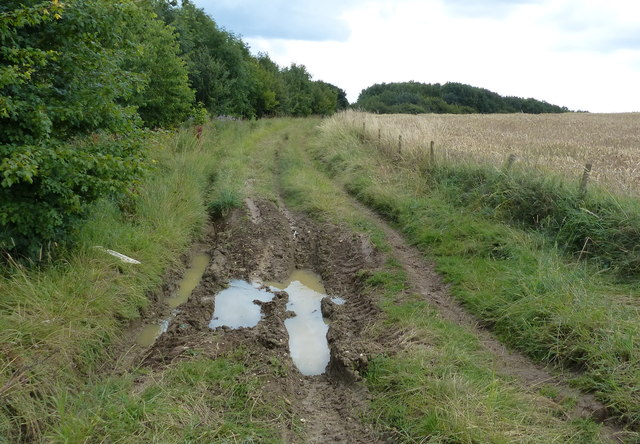 Deeply rutted Covert Lane towards Ingarsby
