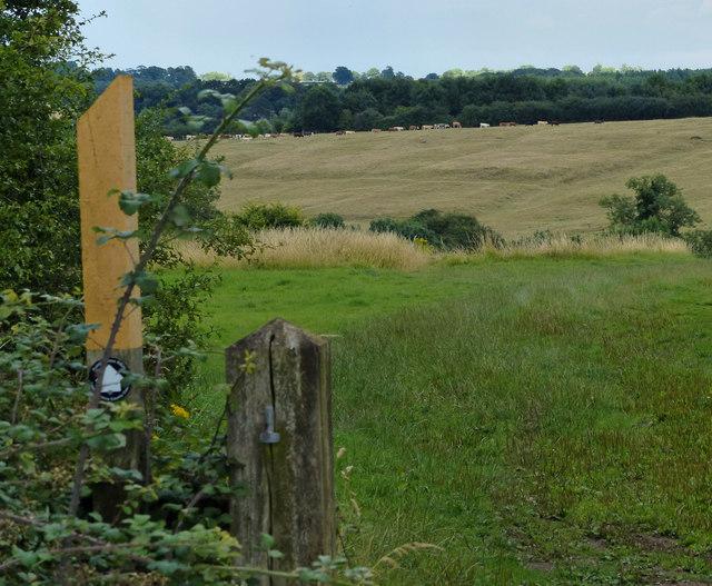 Public footpath marker along Covert Lane