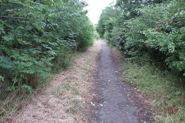 Path towards High Cross